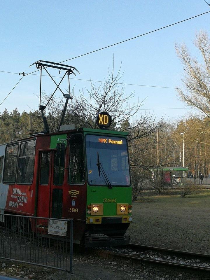 Codzienne podróżowanie MPK Poznań dostarcza wielu...