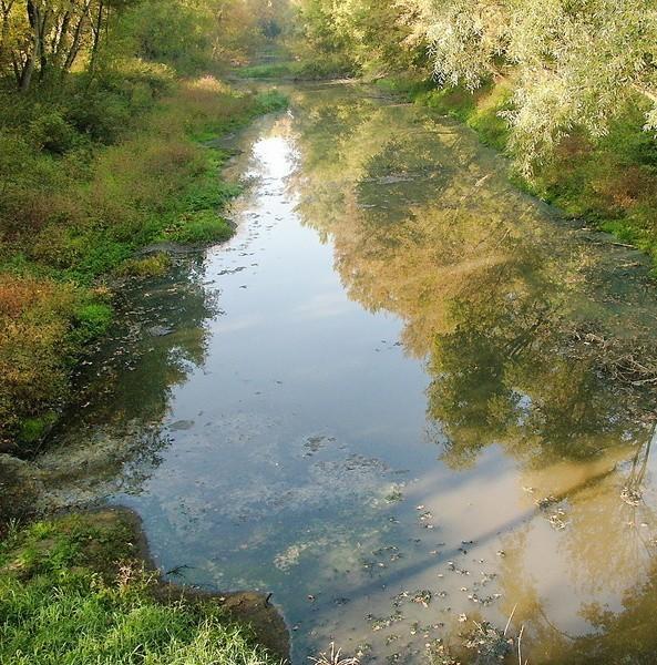 - W tym roku chcemy oczyścić z bagna ten odcinek rzeki - mówi Szczepan Burak