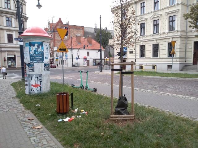 Taki widok niestety nie należy w Toruniu do rzadkości.