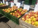 Ceny warzyw i owoców na bałuckim rynku. Są już nowalijki
