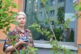 Sosnowiec. Zakaz odwiedzin na oddziale psychiatrycznym w Centrum Pediatrii. Pani Agata walczy o bezpośredni kontakt z córką