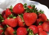 Chcesz tańszych truskawek? Nowy pomysł plantatorów robi FURORĘ w internecie! Czy trend przyjmie się w całym kraju?