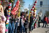 Niedziela Palmowa 2019 w Ciechanowcu. Święcili i wybierali najpiękniejsze palmy w regionie. Prawie 600 palm na procesji (ZDJĘCIA)