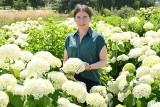Róże, byliny i lilie - to one teraz najpiękniej kwitną w Ogrodzie Botanicznym w Kielcach. Zobacz piękne zdjęcia (ZDJĘCIA)