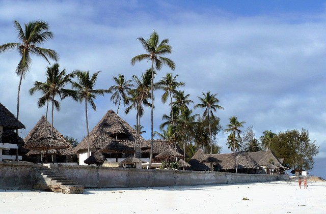 Kim się uczestnicy Hotelu Paradise 4? Poznajcie ich - dowiedzcie się kim są i jakie mają plany na swój pobyt w raju.