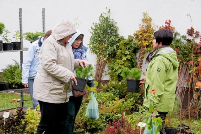 4 maja 2013 r. w godzinach 9 - 15 na rynku miejskim w Bytowie odbędą się IV Targi Ogrodnicze.