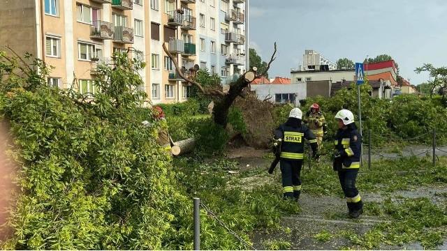 20 czerwca w godzinach popołudniowych nad Gorzowem przeszła ulewa z silnym wiatrem
