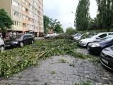 Gwałtowne burze z gradem przeszły przez Wrocław i region [FILMY, ZDJĘCIA]