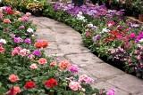 Ścieżki w ogrodzie: jak i z czego je wykonać. Poradnik