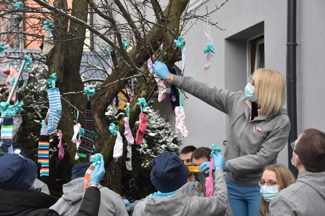 Rybnik. Drzewa na Kościuszki całe w skarpetkach bez pary. To dekoracja z okazji Światowego Dnia Zespołu Downa.Zobacz kolejne zdjęcia. Przesuwaj zdjęcia w prawo - naciśnij strzałkę lub przycisk NASTĘPNE