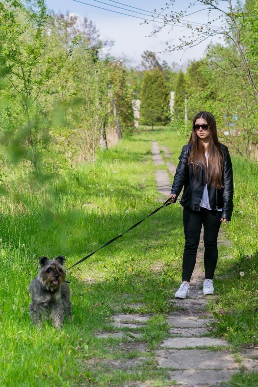 Na Bończyku będzie wybieg dla psów