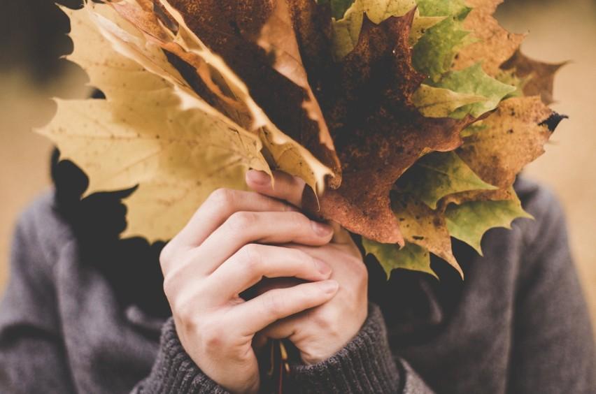 22 września to pierwszy dzień jesieni. Pogoda też jest...