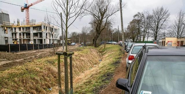 Tak wygląda dziś ten fragment parku Młynówka Królewska, obok którego budowane jest osiedle