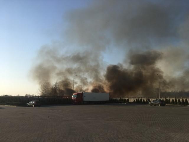 Zdjęcia pożaru traw, niedaleko stacji paliw w Jasionce, otrzymaliśmy od internauty.
