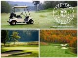 Pole golfowe w Przytoku k. Zielonej Góry (wizualizacja)