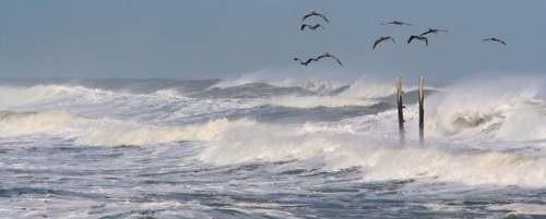 Dziś w nocy wiatr może osiągać prędkość nawet 90 km/h.