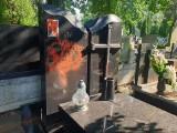 Wandal pomazał farbą grób mecenas Joanny Agackiej-Indeckiej, która zginęła w katastrofie smoleńskiej