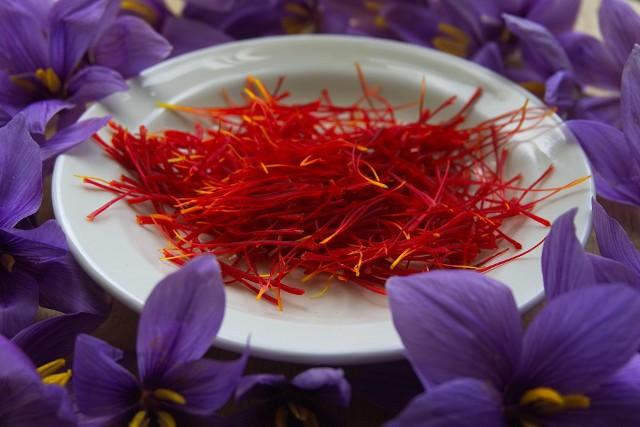 Szafran, przyprawa otrzymywana ze znamion kwiatowych krokusów, jest obiecującym środkiem leczniczym w ADHD