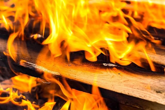 Powiat ostrołęcki. Dwa pożary w lesie jednego dnia