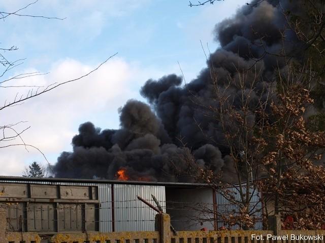 Pożar zabudowań gospodarczych w Lędziechowie.