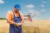 Najlepszy bank według rolników? Pierwsze takie badanie