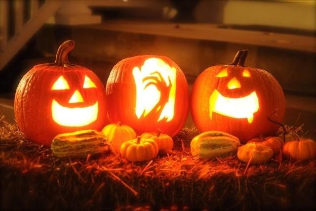 Dynia Na Halloween Jak Zrobić Najlepszą Sprawdź Wzory I
