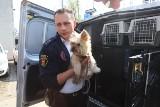 Ponad 7 tysięcy interwencji łódzkiego Animal Patrol straży miejskiej, głównie ratowali psy i koty