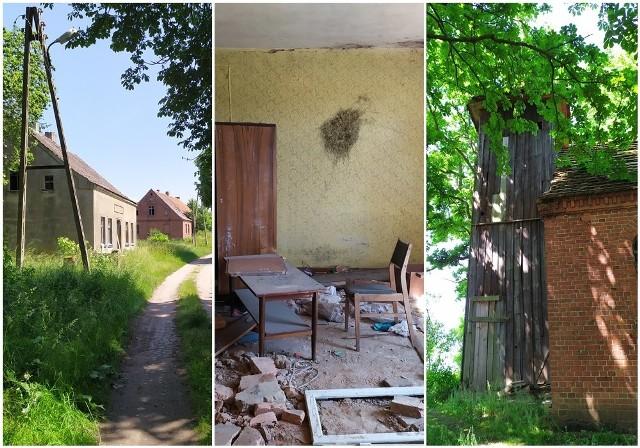 Brzeźnica - opuszczona wieś w powiecie łobeskim