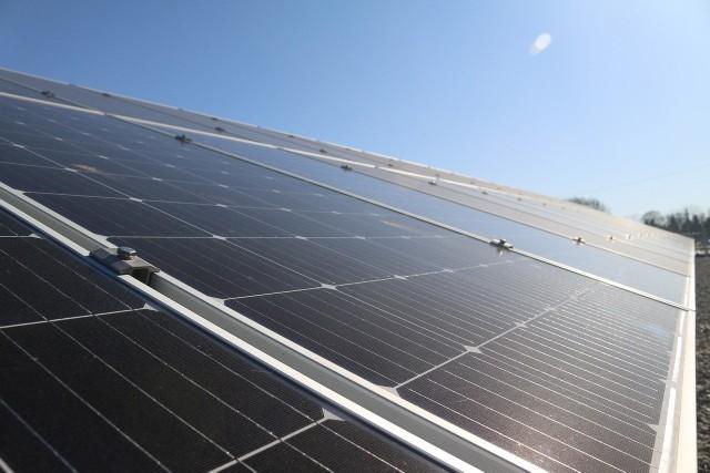 Zlecenie na panele solarne zdobyła firma, która przygotowywała jego warunki
