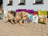 Pół tony karmy dla bezdomnych zwierzaków od klientów Focus Mall w Zielonej Górze