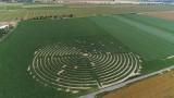 Gigantyczne labirynty kukurydziane. Można w nich buszować