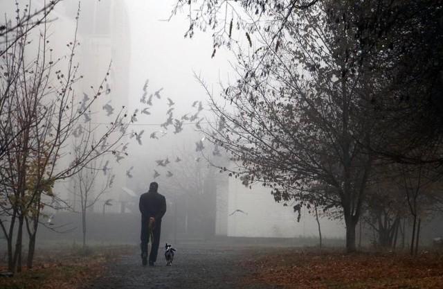 IMGW ostrzega przed gęstą mgłą.