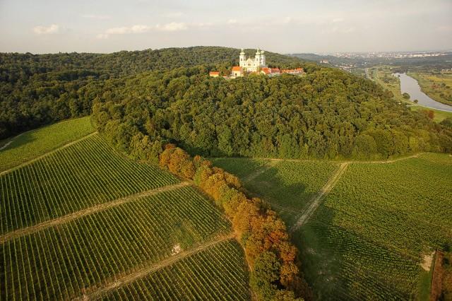 W Krakowie tradycję picia młodego wina na świętego Marcina spopularyzowała Winnica Srebrna Góra.