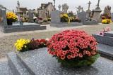 Kwiaty na grób. Żywe rośliny do posadzenia piękniejsze niż gotowe wiązanki i stroiki na Wszystkich Świętych. Zobacz, co wybrać na cmentarz