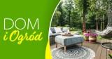 Dom i ogród – czas na remont i aranżację ogrodu
