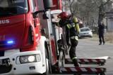 Burza nad Łodzią. Na Olechowie złamane drzewo przewróciło się na cztery auta