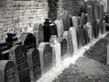Na zamkniętym cmentarzu w Międzyrzeczu powstało niezwykłe lapidarium [ZDJĘCIA]