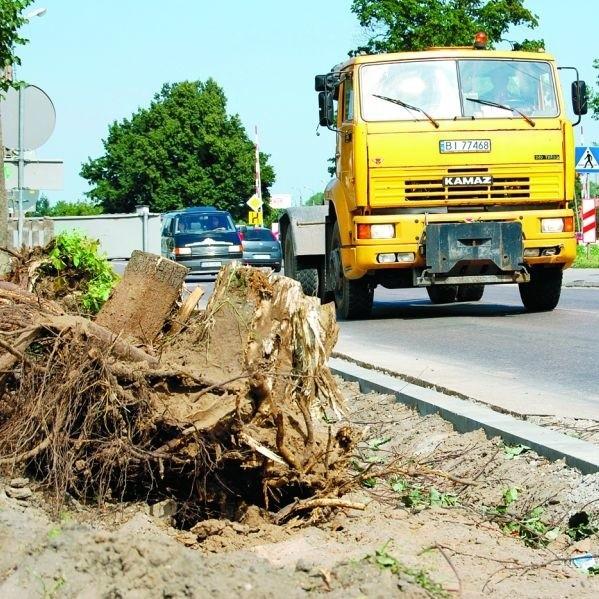 Trwają prace na ul. Sikorskiego w Ełku. W związku z remontem krajowej 16 wycięto rosnące wzdłuż drogi lipy.