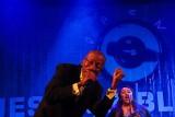 Koncert gospel The Jackson Singers (zdjęcia)