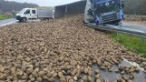 Buraki na drodze. Przewrócona ciężarówka pod Przybiernowem