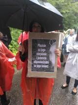 Tatry. Spacerowali z transparentami w obronie praw koni z Morskiego Oka