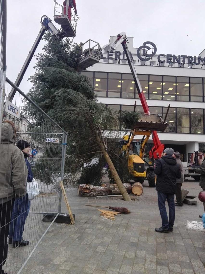 Szopka, a obok wielka, prawdziwa choinka. Lublin stroi się na święta (ZDJĘCIA)