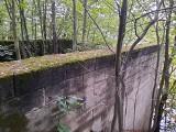 Niesamowite. Co to za dziwna, betonowa konstrukcja w środku lasu?