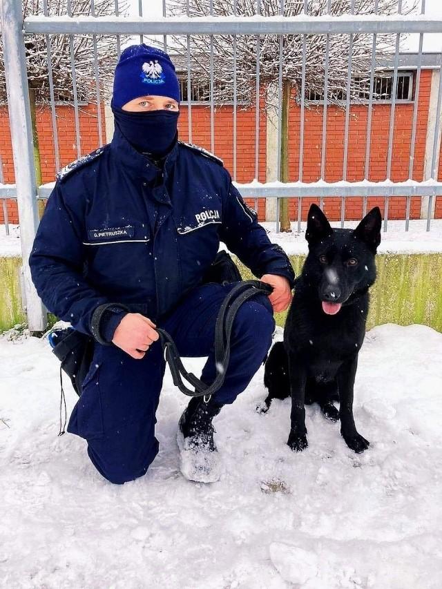 Otel, nowy pies policjantów ze Strzelec Opolskich.