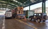 Zwardoń: Przeładowane ciężarówki drewnem zatrzymane na granicy