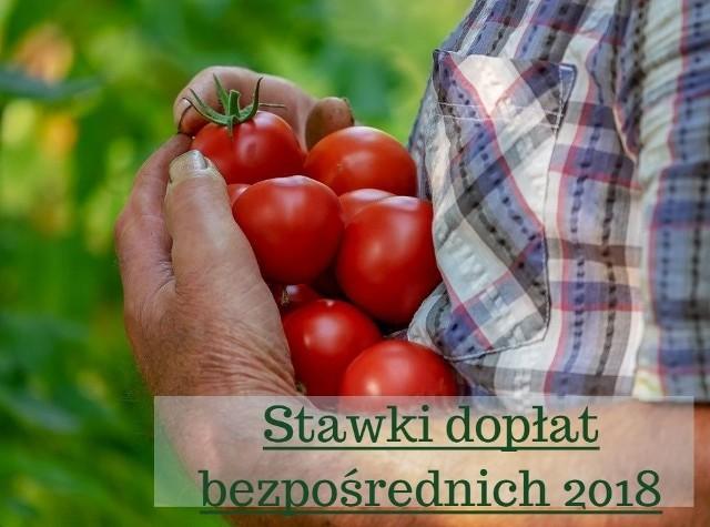 Resort rolnictwa zaplanował wysokość stawek dopłat bezpośrednich za 2018 rok. A przypomnijmy, z wyliczeń wynika, że ich całkowita suma wyniesie 14,8 mld złotych. Porównajmy projektowane stawki dopłat 2018 z ubiegłorocznymi danymi.Największy wzrost płatności dotyczy pomidorów (ostatnio to właśnie stawka za te warzywa obniżyła się najbardziej). Kiedy w zeszłym roku wynosiła 1654,3 zł za hektar, tym razem mowa o 3320,78 zł/ha. Kto jeszcze dostanie więcej? Kto mniej? Kolejne prawdopodobne stawki dopłat bezpośrednich znajdziecie na następnych stronach.Dodajmy, że dopłaty bezpośrednie uzależnione są od kursu euro ogłaszanego przez Europejski Bank Centralny. Kurs opublikowany 28 września wyniósł 4,2774 zł za euroTen rok był wyjątkowy dla gospodarzy znad Wisły, którzy po raz pierwszy zmierzyć musieli się się z elektronicznymi wnioskami i aplikacją eWniosekPlus. Obaw było wiele, ale - jak zapewnia Agencja, poszło im dobrze. Łącznie z oświadczeniami wpłynęło 1 340 121 wniosków. Najwięcej z woj. mazowieckiego, lubelskiego, łódzkiego, wielkopolskiego.431 tys. osób skorzystało z możliwości wypełnienia deklaracji o braku zmian w stosunku do wniosku sprzed roku. Mogli tak zrobić rolnicy gospodarujący na małych obszarach (do 10 ha).Polscy gospodarze mogli składać wnioski o dopłaty od połowy maja do połowy czerwca. Kto spóźnił się, ale zdążył do 10 lipca, za każdy roboczy dzień po terminie straci 1%.