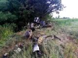 Samolot T-28 Trojan rozbił się wracając z pokazów w Lesznie. Nie żyją dwie osoby