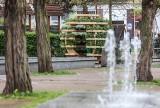 Growroom w Gdańsku. Niezwykły ogród w kształcie kuli można oglądać na Strzyży. Rosną tam kwiaty, zioła, a nawet truskawki ZDJECIA