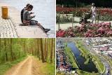 Gdzie na spacer w Szczecinie. Oto TOP 10 miejsc na weekendowy spacer po naszym mieście [ZDJĘCIA]