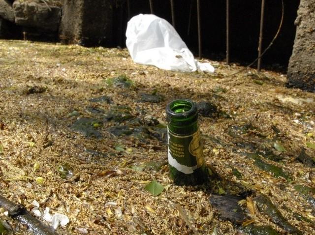 Śmieci pływające w jednym ze zbiorników wodnych w Parku Kultury i Wypoczynku.